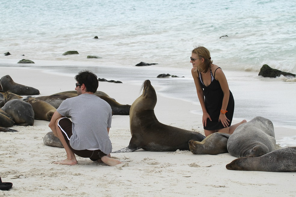 SEA LIONS WITH PEOPLE