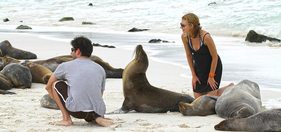 SEA LIONS WITH PEOPLE1