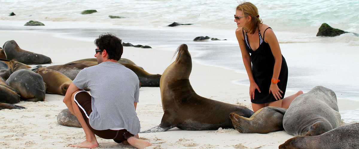 people with sea lionsx